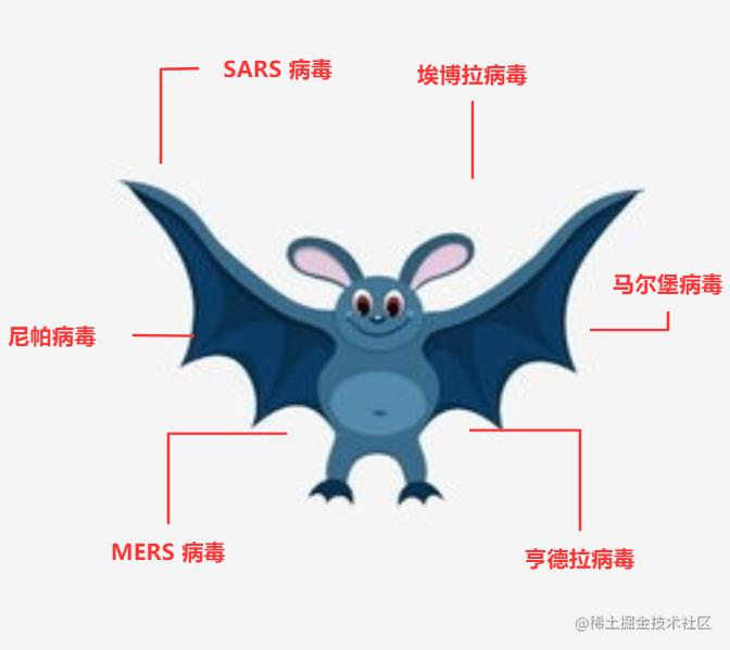蝙蝠携带的病毒