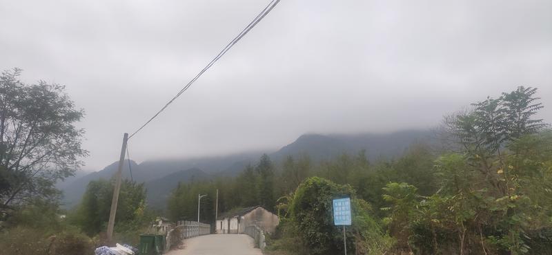 李小贱于2021-10-09 22:10发布的图片