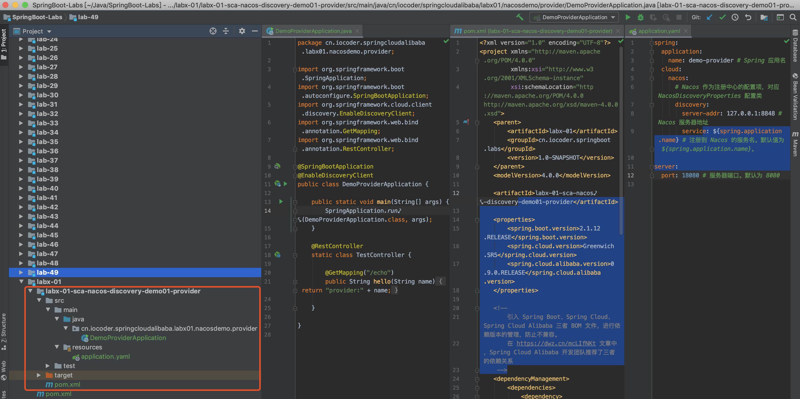 demo-provider 项目
