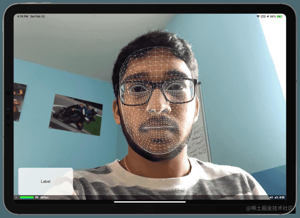 face-mesh-demo